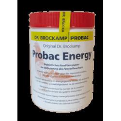 PROBAC ENERGY 500 G